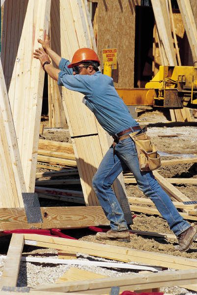 Working Labor